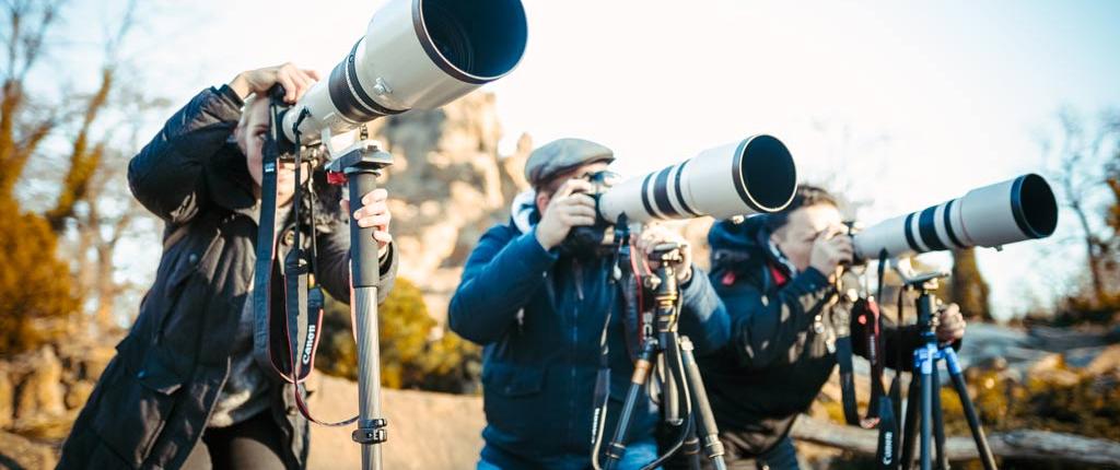 Ausbildung Photo Artist